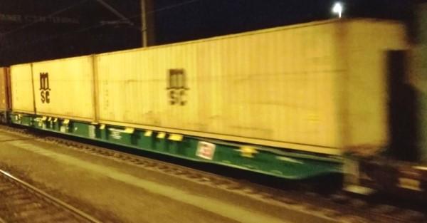 H0 Sggnss 80 Steiermärkische Landesbahnen + MSC Containern - IGRA 96010024  | günstig bestellen bei Modelleisenbahn Center  MCS Vertriebs GmbH