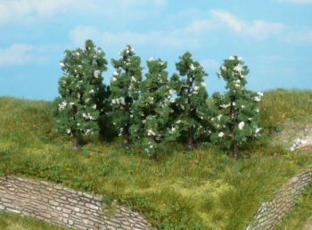 Birnbäume blühend 6cm, 6 Stück - Heki Meisterprogramm  | günstig bestellen bei Modelleisenbahn Center  MCS Vertriebs GmbH