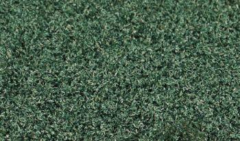 Blattlaub weidengrün, microfeine Blätter - Heki - ideal zum Nachbeflocken Ihrer Bäume und Büsche | günstig bestellen bei Modelleisenbahn Center  MCS Vertriebs GmbH