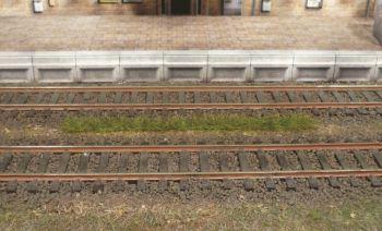 Grasstreifen sommergrün, 5-6mm hoch, 10 Stück - Heki  - je 100mm lang | günstig bestellen bei Modelleisenbahn Center  MCS Vertriebs GmbH