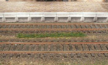 Grasstreifen sattgrün, 5-6mm hoch, 10 Stück - Heki - je 100mm lang | günstig bestellen bei Modelleisenbahn Center  MCS Vertriebs GmbH