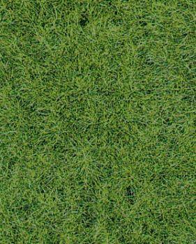 Grasmatte Wildgras Waldboden, 2 St. a 40 x 24cm - Heki - mit 6mm hohen Grasfasern | günstig bestellen bei Modelleisenbahn Center  MCS Vertriebs GmbH
