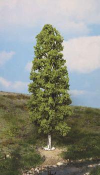 Birke, 27cm hoch - Heki Super Artline  | günstig bestellen bei Modelleisenbahn Center  MCS Vertriebs GmbH