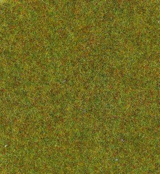 Grasmatte herbstgrün, 200 x 100cm - Heki - mit 2-3mm hohen Grasfasern | günstig bestellen bei Modelleisenbahn Center  MCS Vertriebs GmbH