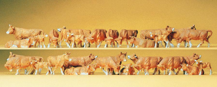 1:87 Kühe, braun, 30 St. - Preiser 14409  | günstig bestellen bei Modelleisenbahn Center  MCS Vertriebs GmbH
