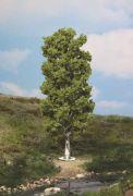 Birke, 20cm hoch - Heki Super Artline Art.Nr.346-1984